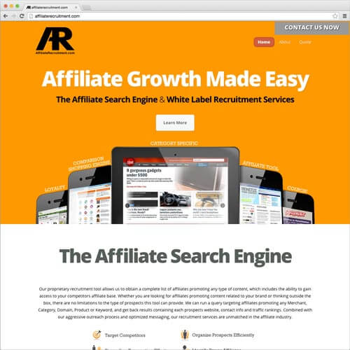 website picture affiliaterecruitment.com domain reviews